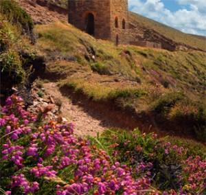 cornwall-roseland-photography2